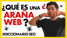 ¿Qué es una ARAÑA WEB?